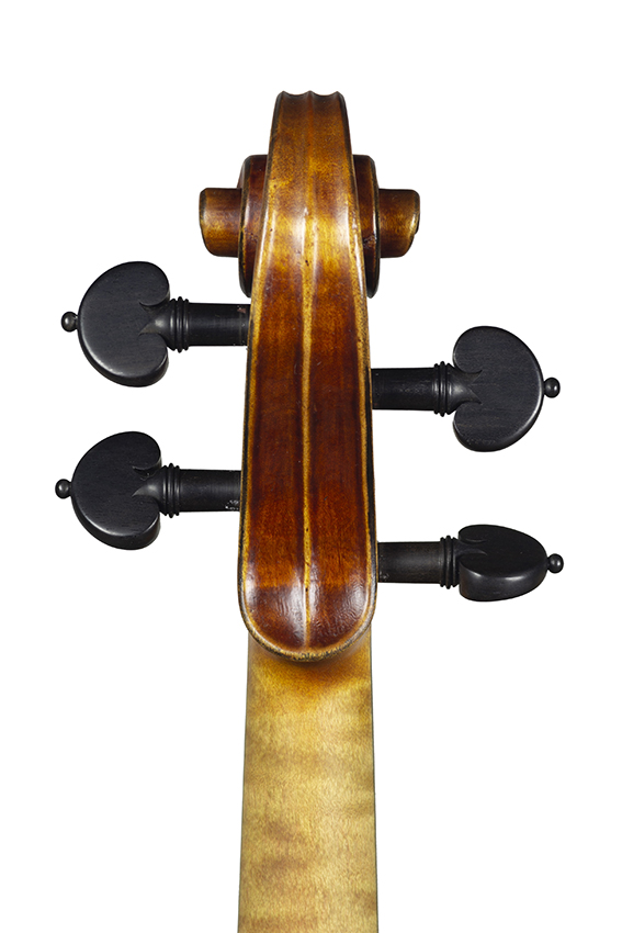 violin nicolas gilles 2020 head back net
