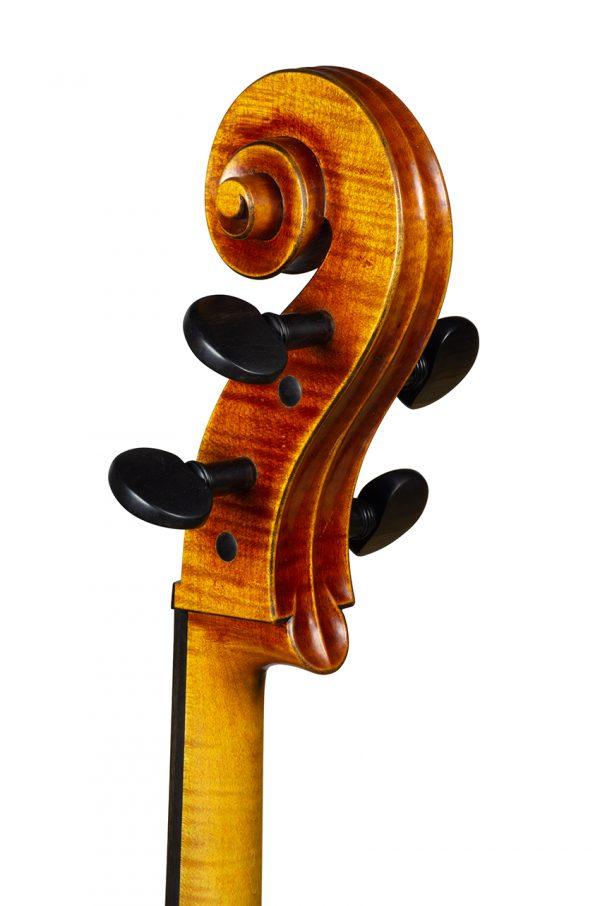 Violoncelle Cello dec_janv 2021 Nicolas GILLES tete dos 3 4