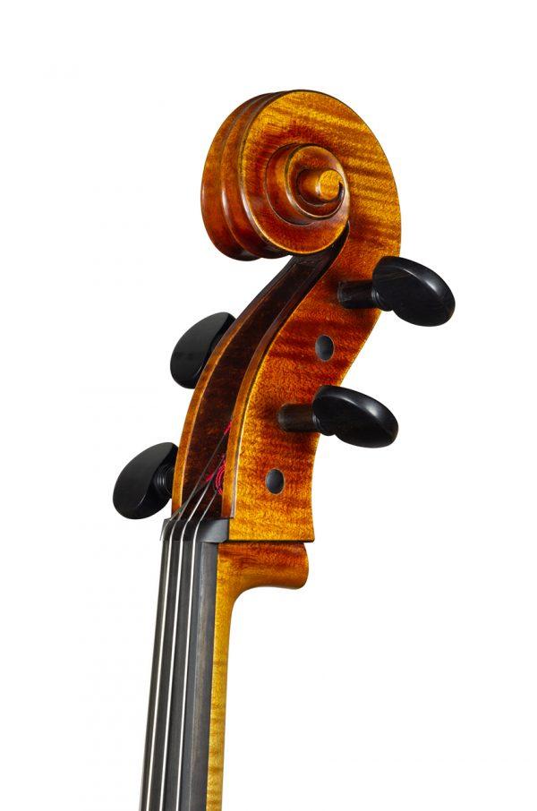 Violoncelle Cello dec_janv 2021 Nicolas GILLES tete face 3 4