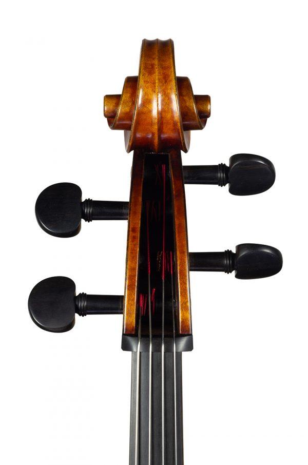 Violoncelle Cello dec_janv 2021 Nicolas GILLES tete face
