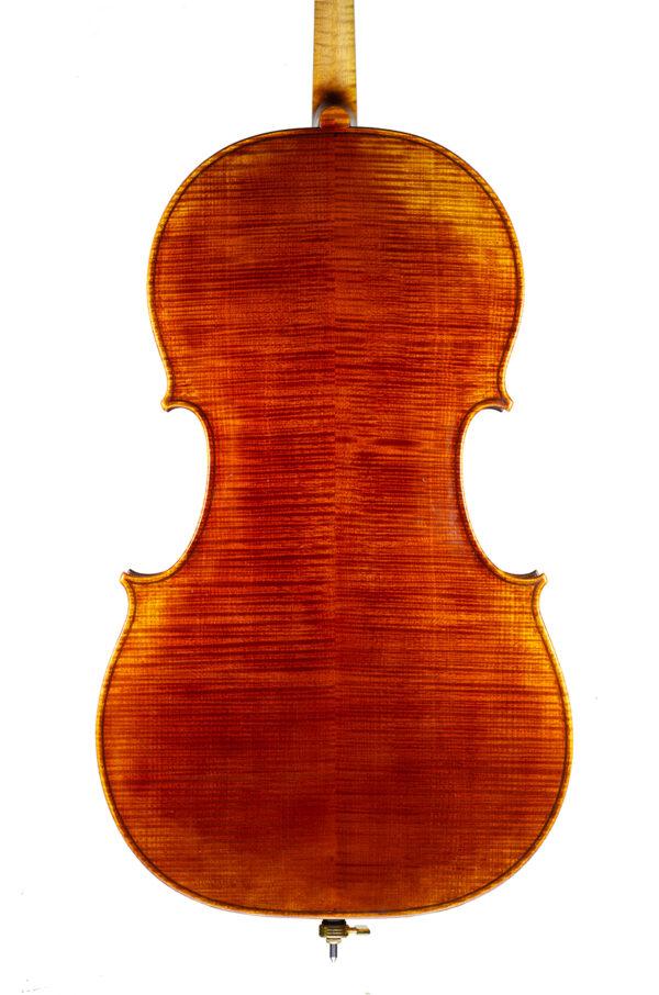 Cello may 2021 nicolas gilles back