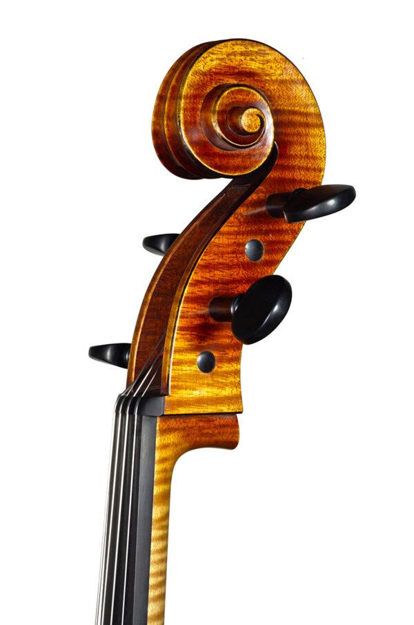 Cello may 2021 nicolas gilles head front 3 4