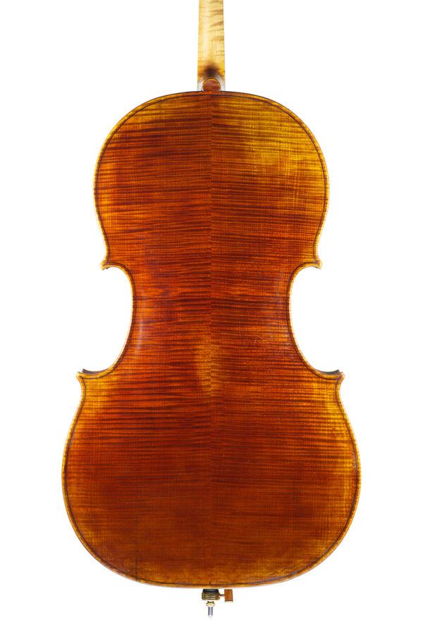 Cello Nicolas Gilles august 2021 back net