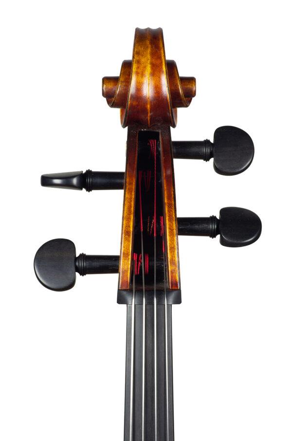 Cello Nicolas Gilles august 2021 head front net