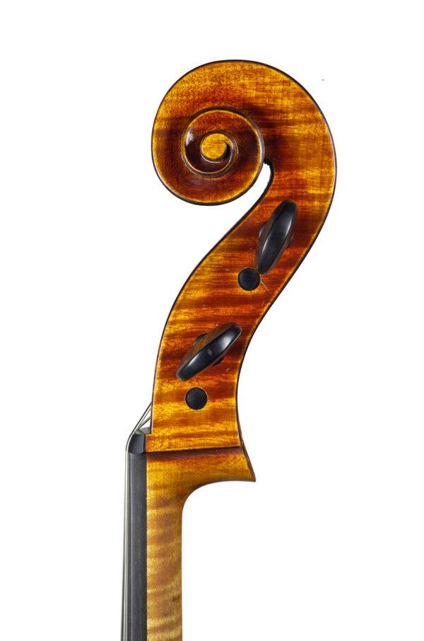 Cello Nicolas Gilles august 2021 head right net